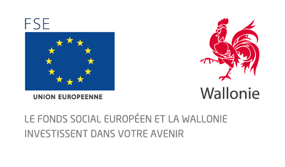 logo_fsewallonie